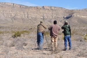 Bison Hunt in Texas