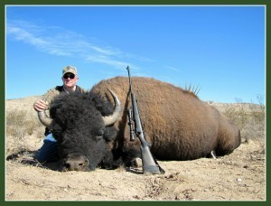 Buffalo Hunt - Double Diamond Outfitters
