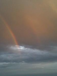Whitetail Deer Hunts - Rainbow over Texas