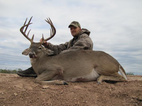 Texas Deer Hunting - whitetail buck