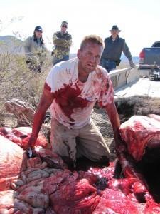 Bison Hunt or Texas Chain Saw Massacre