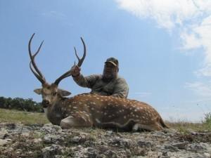 Texas Hunts - Axis Deer 2
