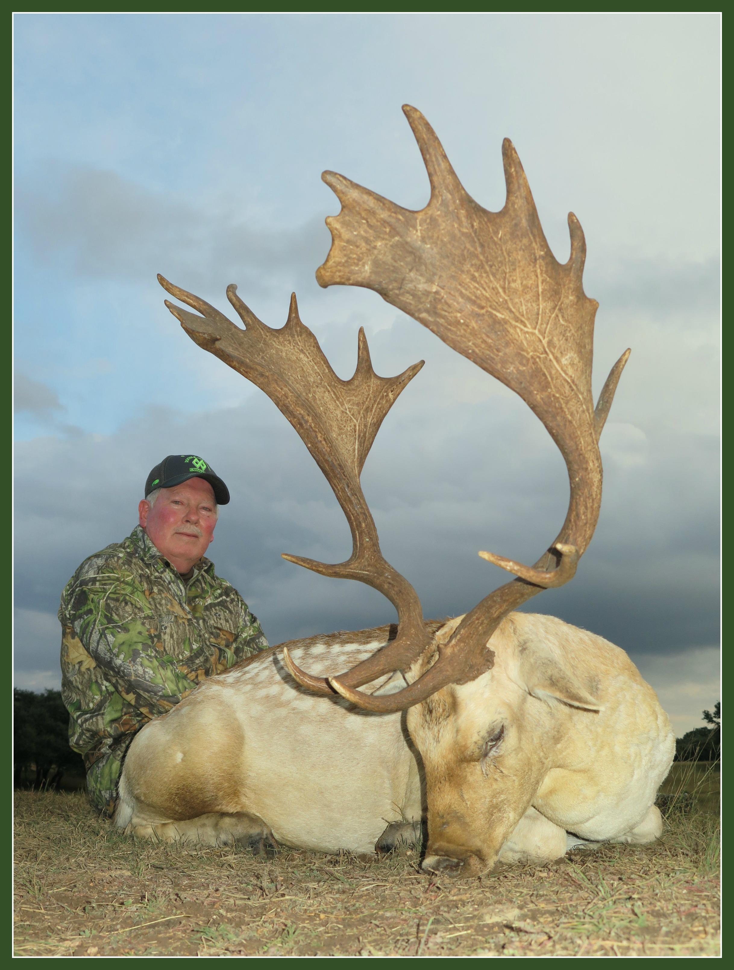 Texas Fallow Deer Hunting