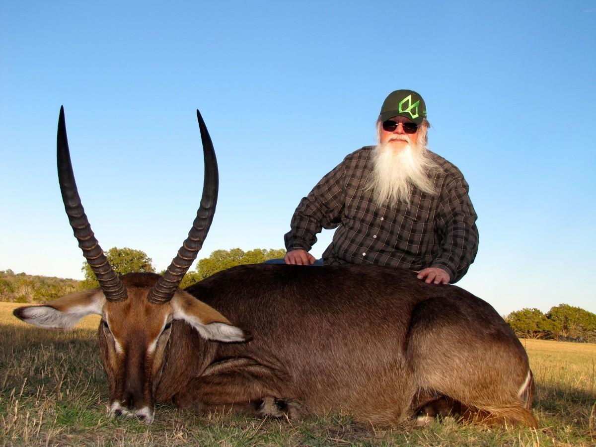 Waterbuck - Texas Exotic Hunts